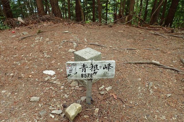 吉野山最高峰 青根ヶ峰