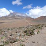 キリマンジャロの練習に富士山へ登ってきた
