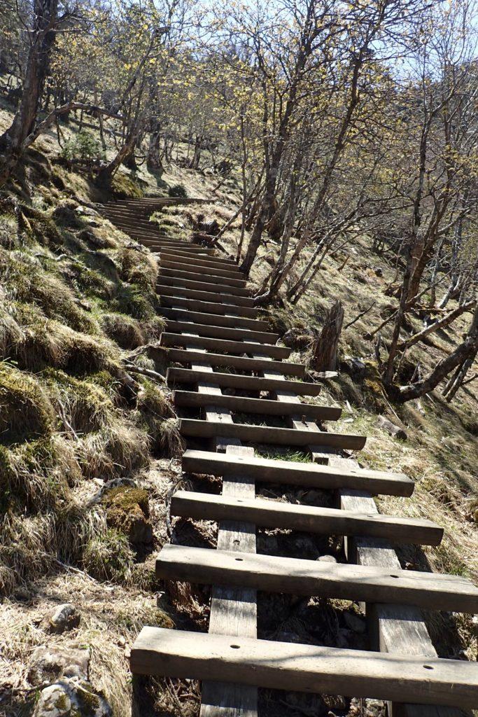 弥山の登り