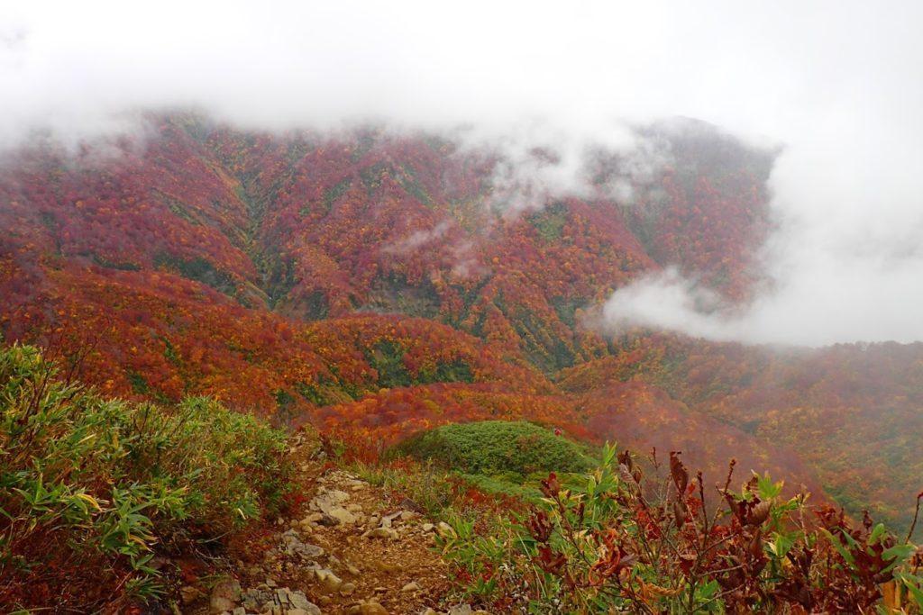雨飾山の紅葉