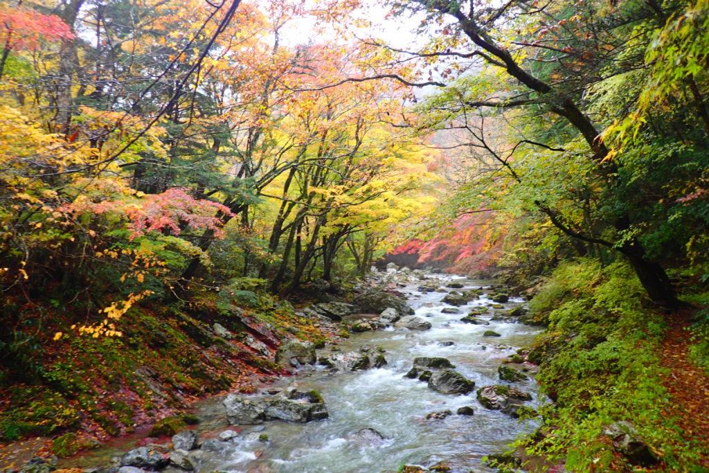 小田深山渓谷