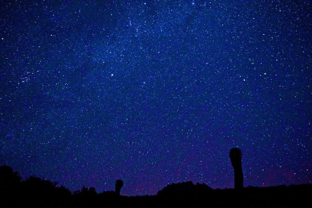 キリマンジャロの星