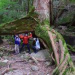 子供と一緒に屋久島の自然を楽しんできました