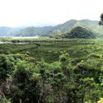 奄美大島と秘境のトカラ列島有人島を全て歩いてきた