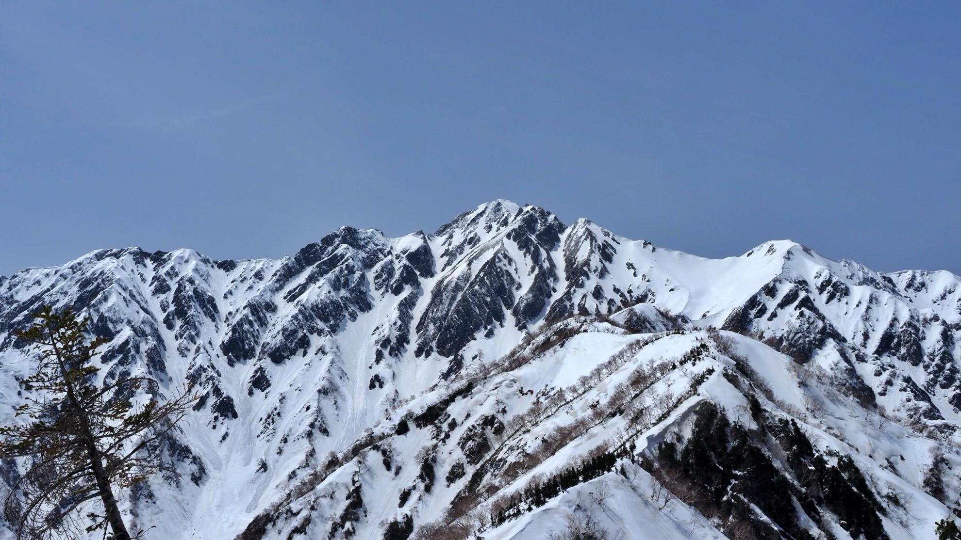 遠見尾根から五竜岳